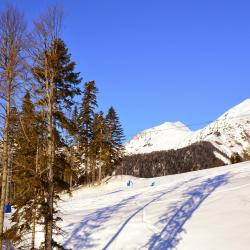 Roza Khutor Ski Resort, Estosadok