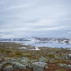 Hardangervidda, Kinsarvik