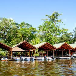Tortuguero Lagoon Natural Reserve, Arjeplog