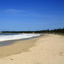 Maracaipe Beach