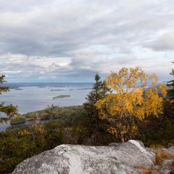 Koli National Park, Kolinkylä