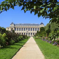 Jardín de plantas de París