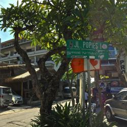 Poppies Lane 1