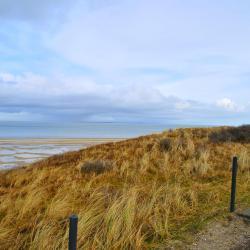 National Park Dunes of Texel