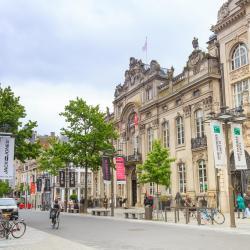 Meir, Antwerp
