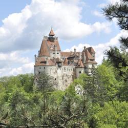 Zamek w Branie, Bran