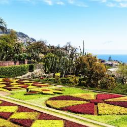 Jardín botánico de Madeira