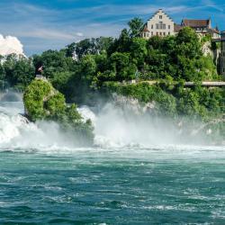 萊茵瀑布, Dachsen