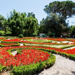 Angiolina Park