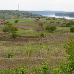 Vratsa Province
