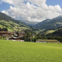 Alpbach Valley