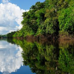 Amazonas 45 self catering properties
