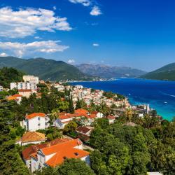 Herceg Novi County 563 apartments