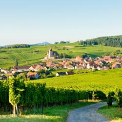 Alsace 6 Best Western hotels