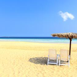 Boa Vista 93 vacation rentals