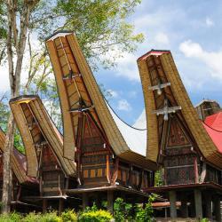 Sulawesi 11 holiday homes