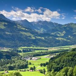 Canton of Fribourg