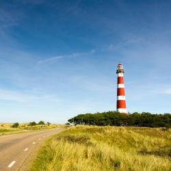 Ameland 81 pet-friendly hotels