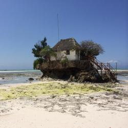 Zanzibar 181 B&Bs