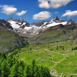 瑞士阿尔卑斯山