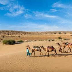 Rajasthan 71 self catering properties