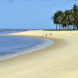 Alagoas 600 self catering properties
