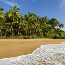 South Goa 88 self catering properties