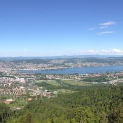 Zurich kanton