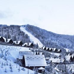 Bukovel Ski 98 apartments