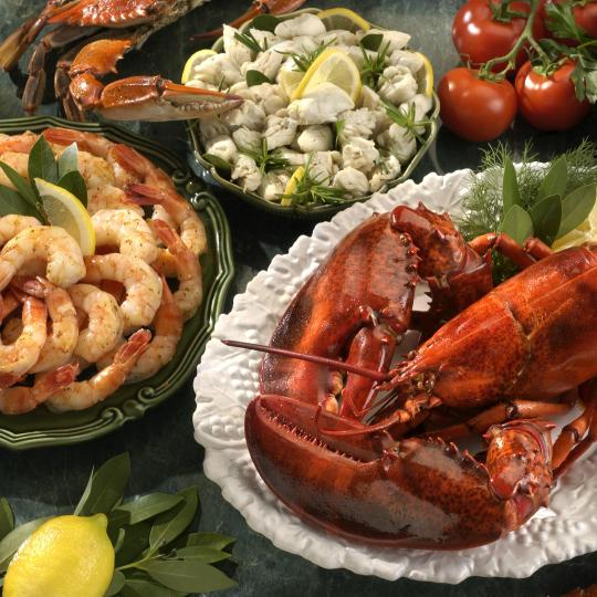 Seafood restaurants in Peschici