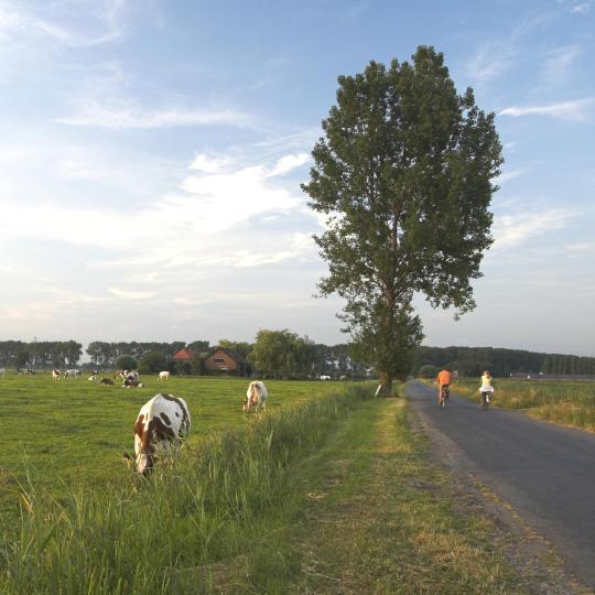 Frisian Eleven Cities Tour by bike