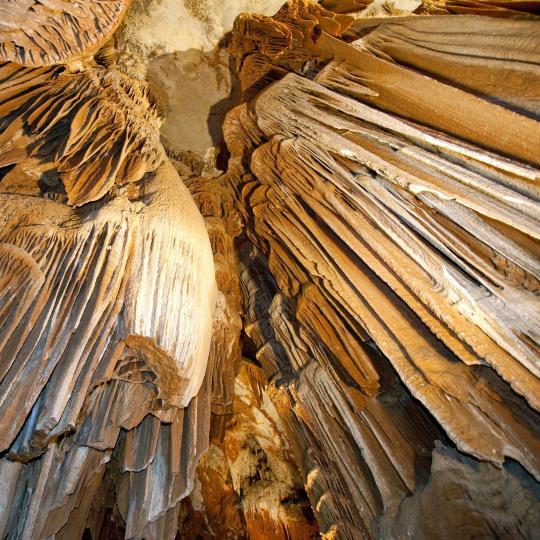 Découvrez les vestiges paléolithiques de la grotte Chauvet - Pont d'Arc