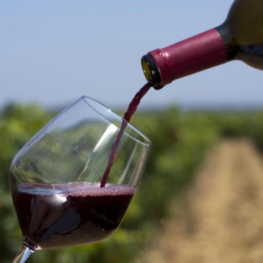 Découvrez les vins d'appellation Côtes-du-Rhone