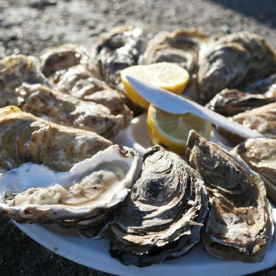 Cancale's Oysters