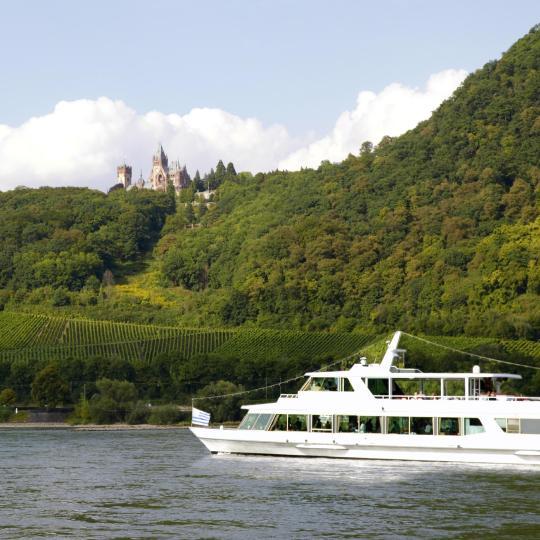 Wine tour along the River Rhine