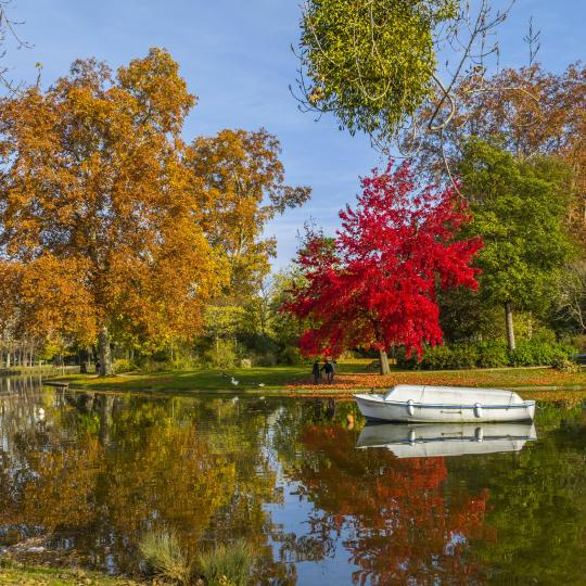 Promenade verdoyante au bois de Vincennes