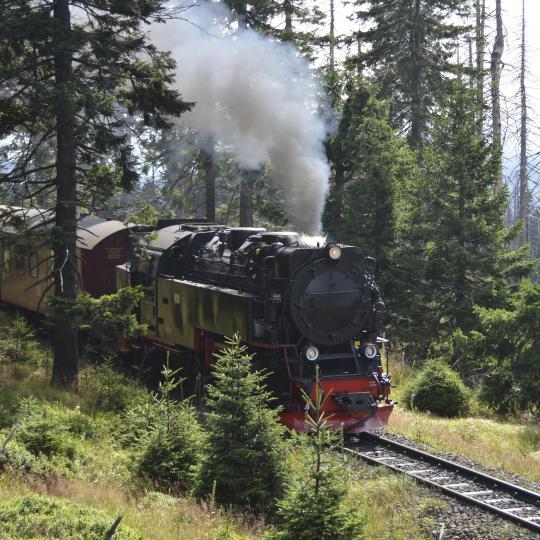 Todos a bordo do Harz Narrow Gauge Railway