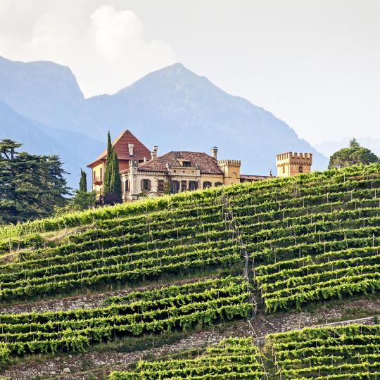The South Tyrolean Wine Road