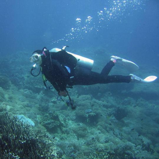 Submarinismo en Jandía