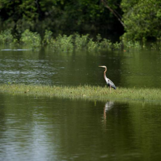 La Brenne Nature Park