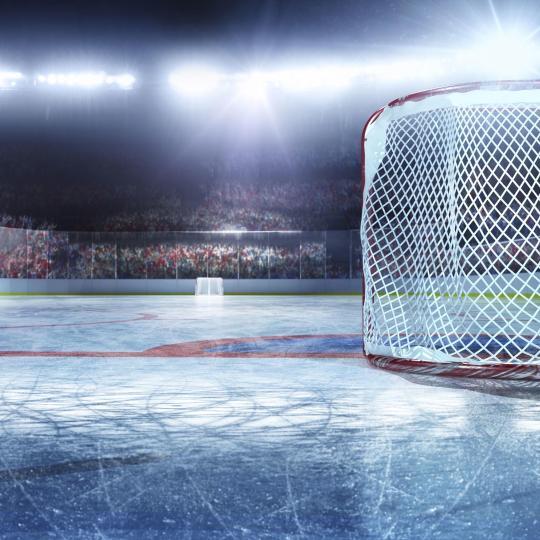 Gianmario Scola indoor ice stadium