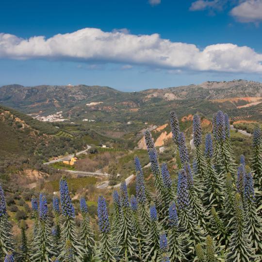 Botanical Park and Gardens of Crete
