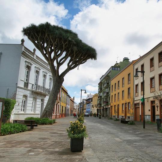Den gamle by San Cristóbal De La Laguna