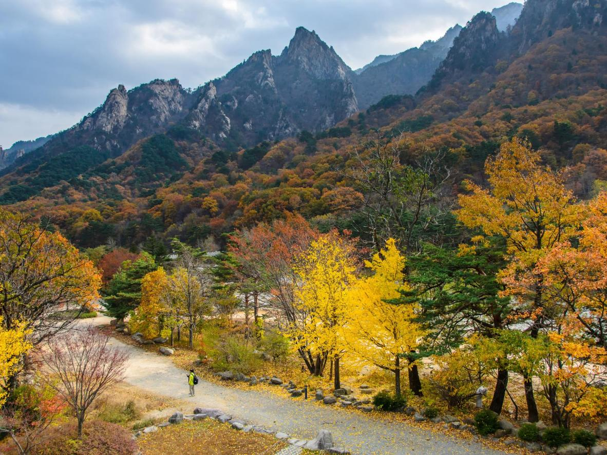 The mountains near Seoul are a hub for outdoor activities and snowsports