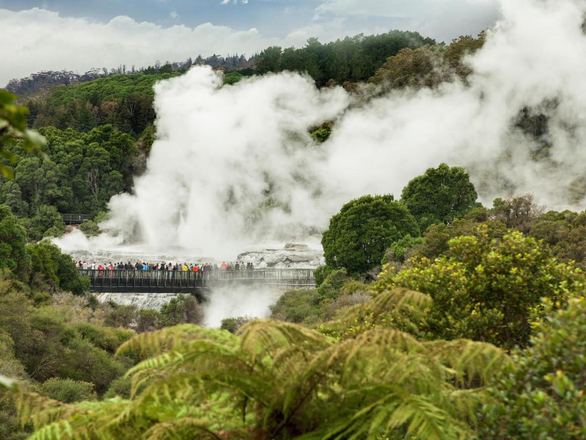 Te Puia's Whakarewarewa Valley in Nieuw-Zeeland