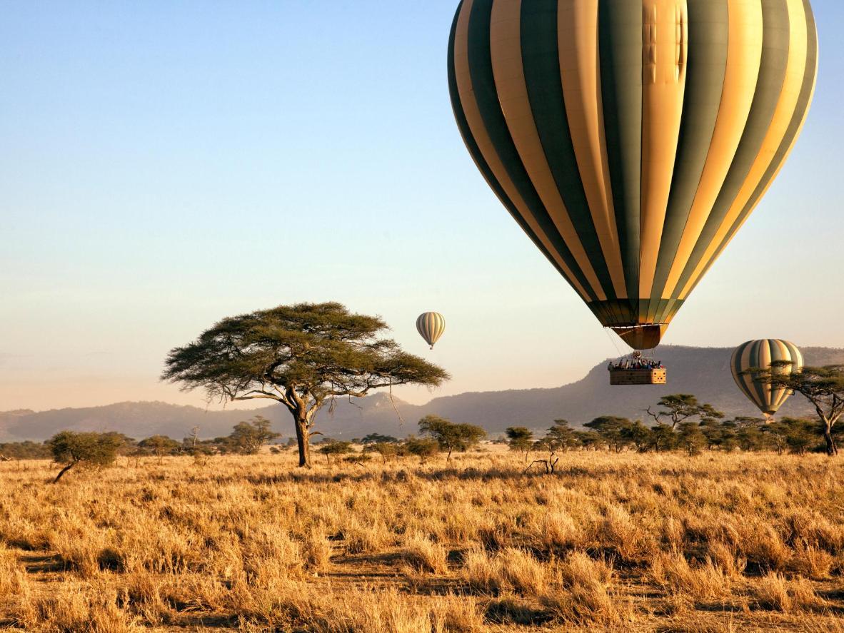 Admire o Serengeti de um balão como se fosse um pássaro
