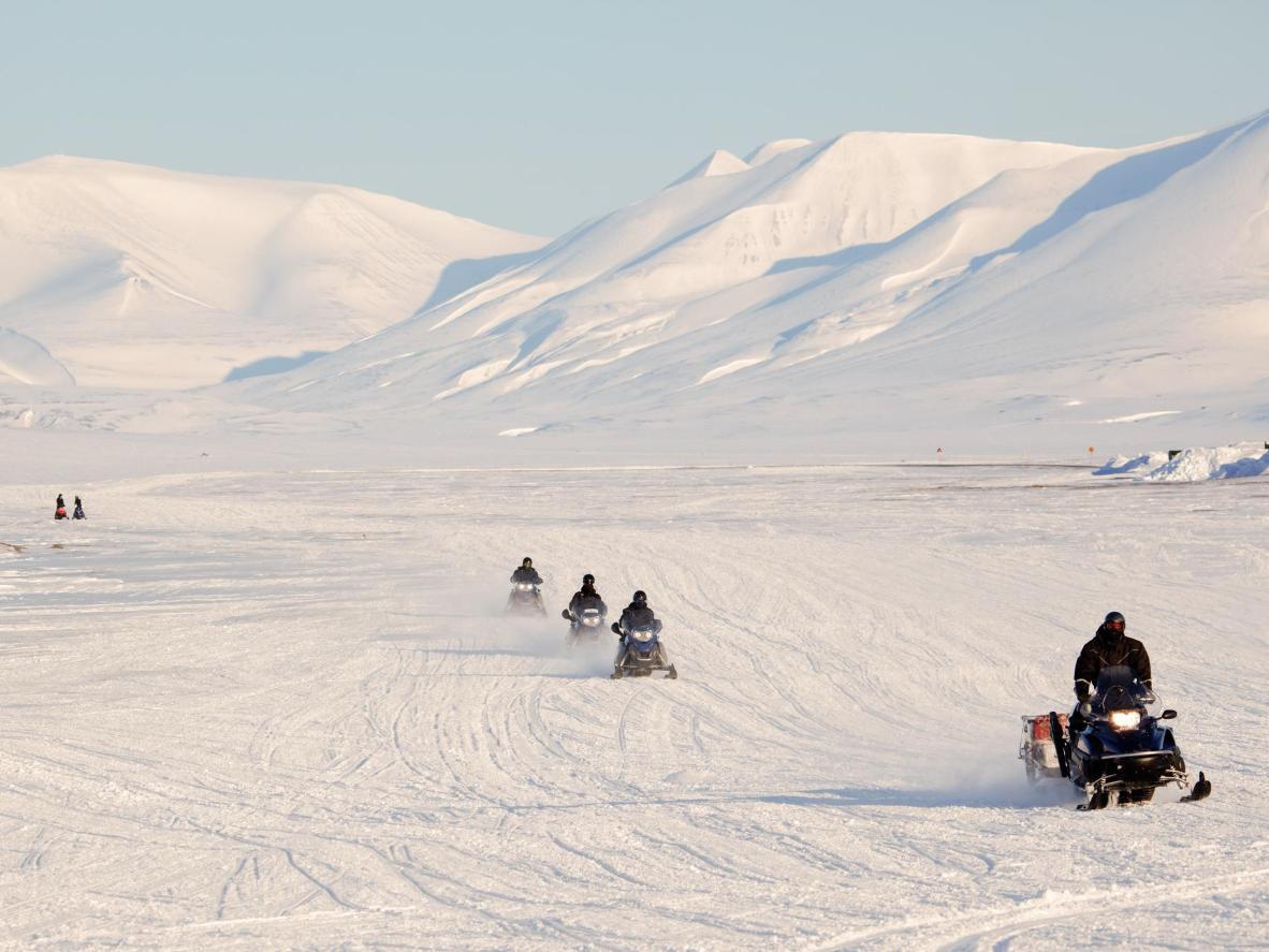 Катание на снегоходах и собачьих упряжках в краю белых медведей и песцов