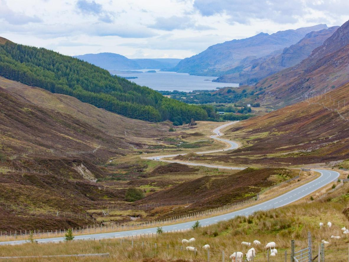 In the Cairngorms National Park you drive along the mountains, lochs and heathlands