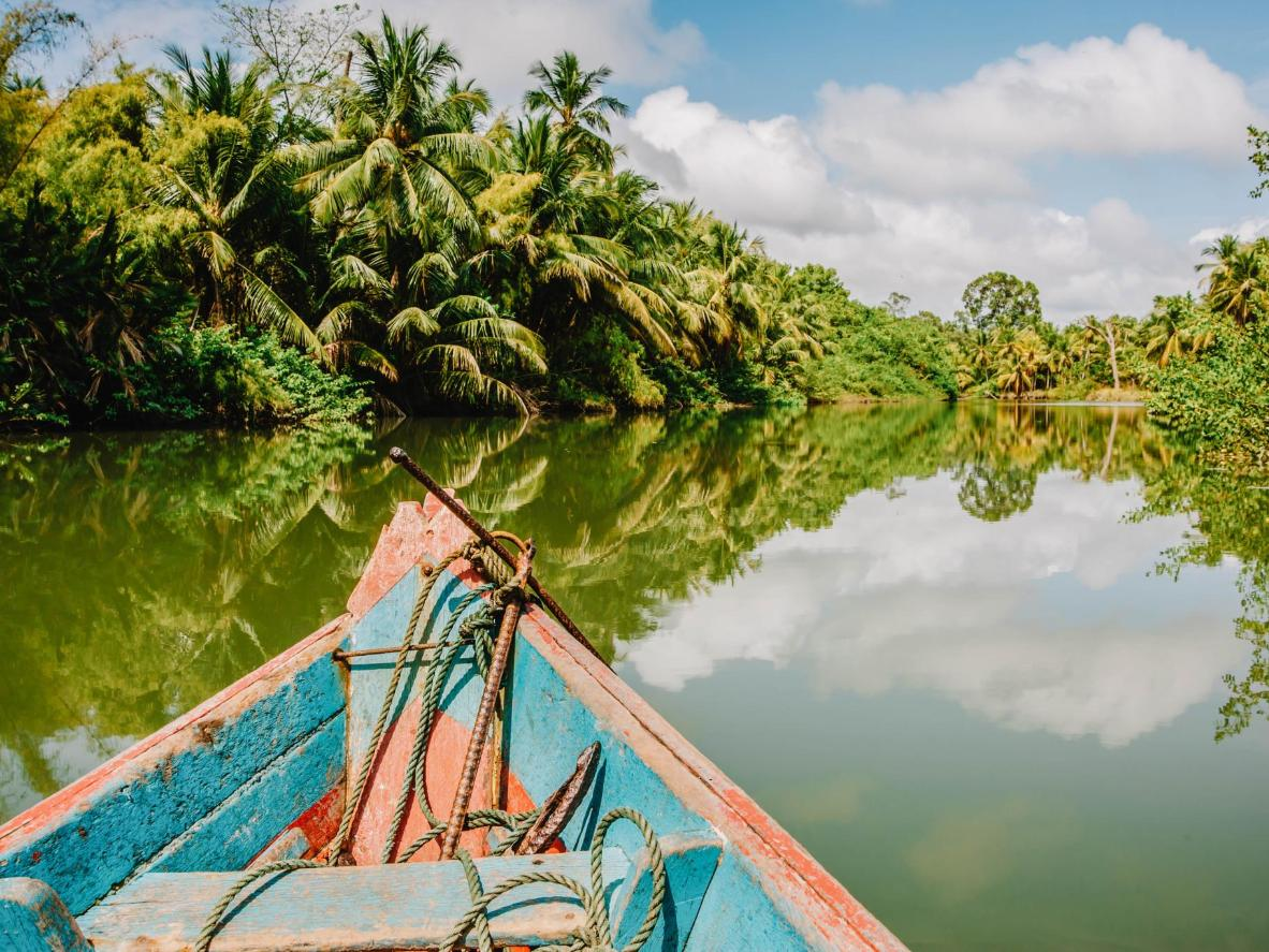 Head to Soure, a river island in the Amazon estuary, to see exemplary beaches and water buffalo