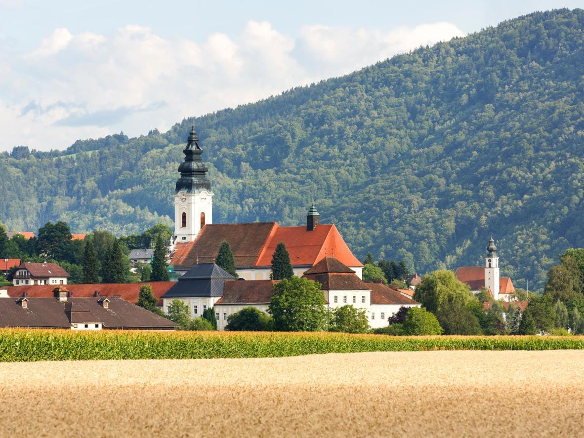 Eine ruhige Lage für bestes Bier, inmitten der bewaldeten Hügel Österreichs